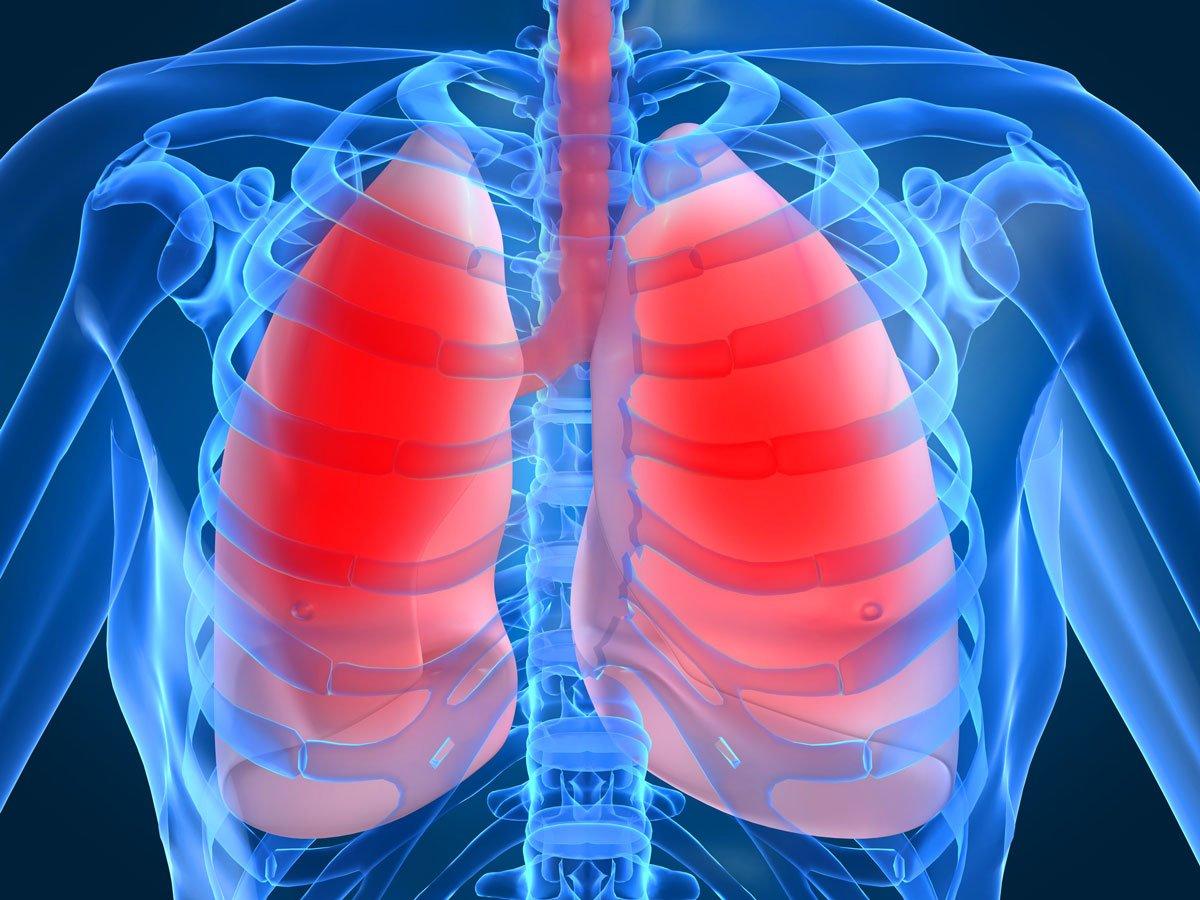 КТ органов грудной полости и органов брюшной полости