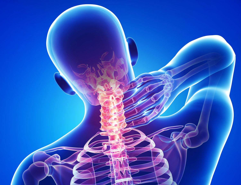 КТ шеи, органов грудной полости, органов брюшной полости и органов малого таза