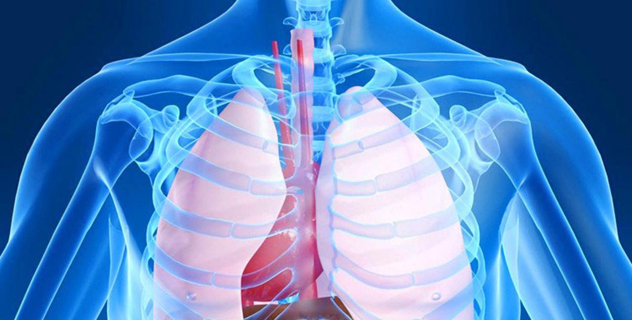 КТ ОГП – Компьютерная томография грудной полости